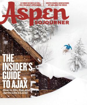 Aspensojourner hol14 15 cover ski qeywbo