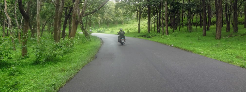 Mudumulalai_Wildlife_Sanctuary_Roads2