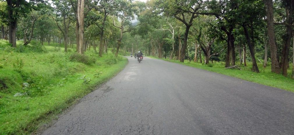 Mudumulalai_Wildlife_Sanctuary_Roads_3