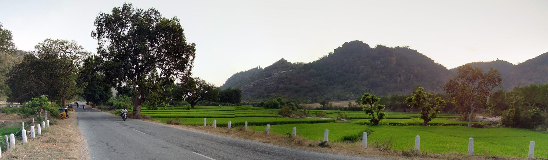 Road_Panorama_View