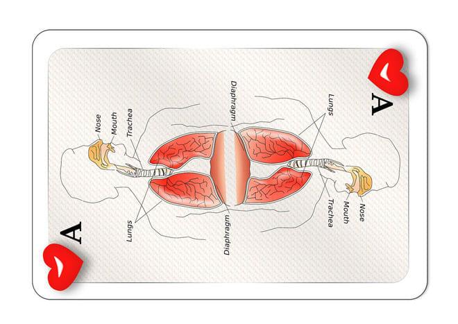 Playing Card Design Depicting Respiration