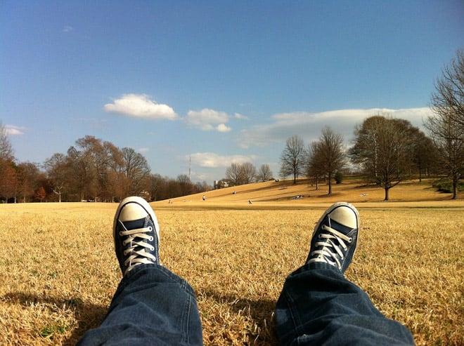 Relaxing in a field