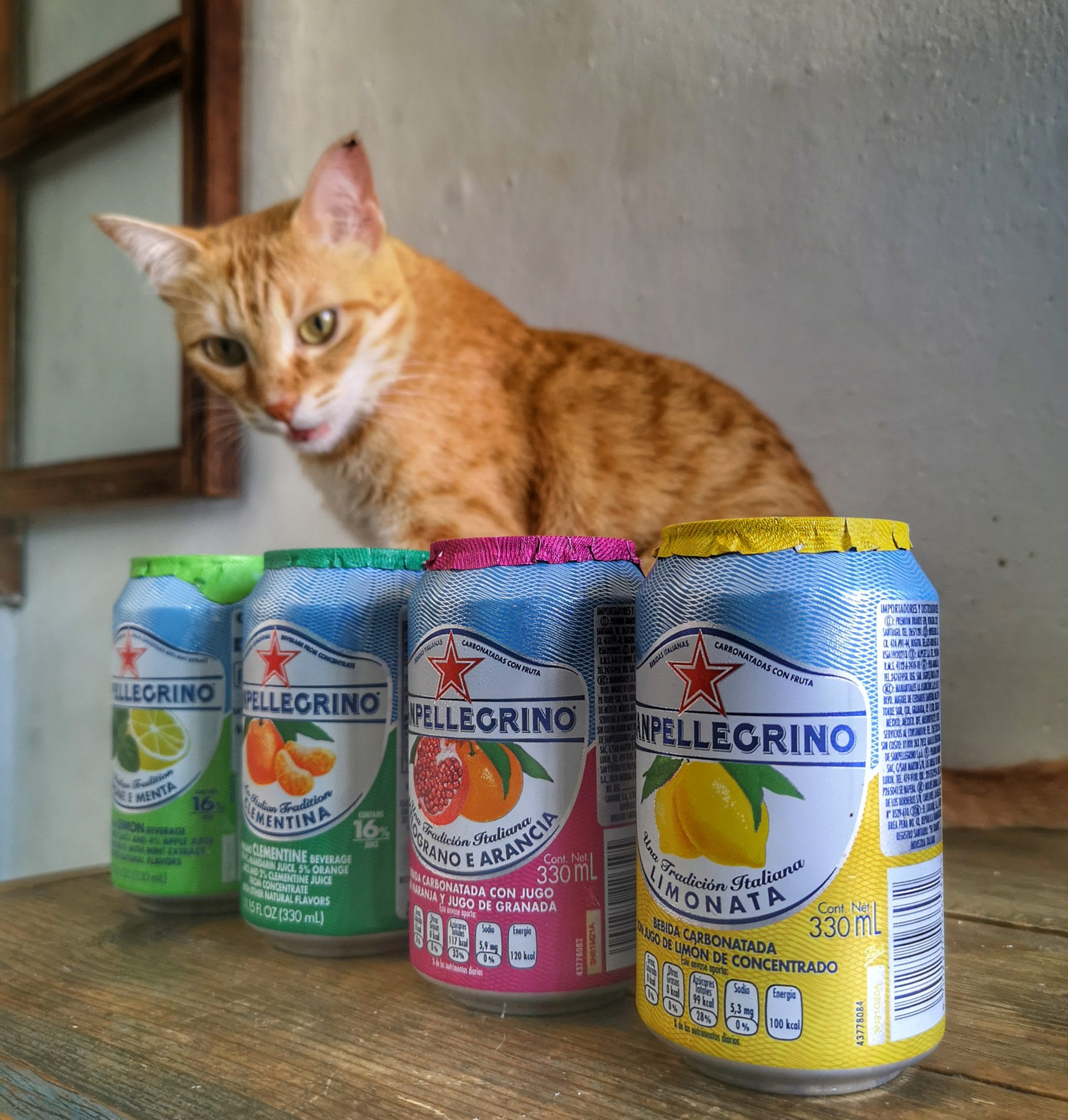 My cat Squanchy is curious about the 4 different Sanpellegrinos Fruit Sodas I have bought.