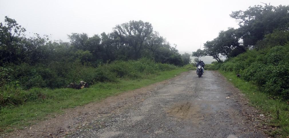 Gopalaswamy_Hills_Roads
