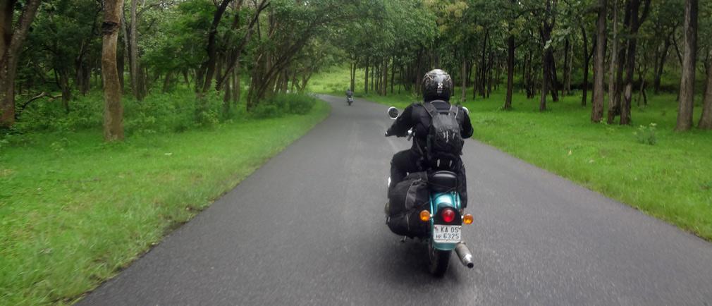 Mudumulalai_Wildlife_Sanctuary_A_Ride_Through_Wilderness