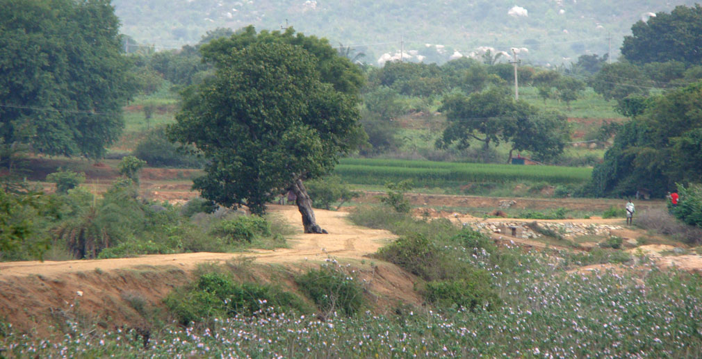 To_Madanapalle_Surrounding_Area