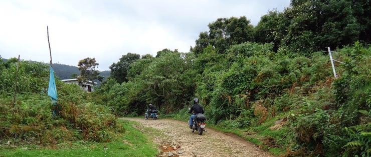 Anamudi_Shola_National_Park