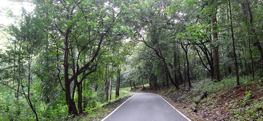 Athirappilly_to_Valparai_Damn_Great_Roads