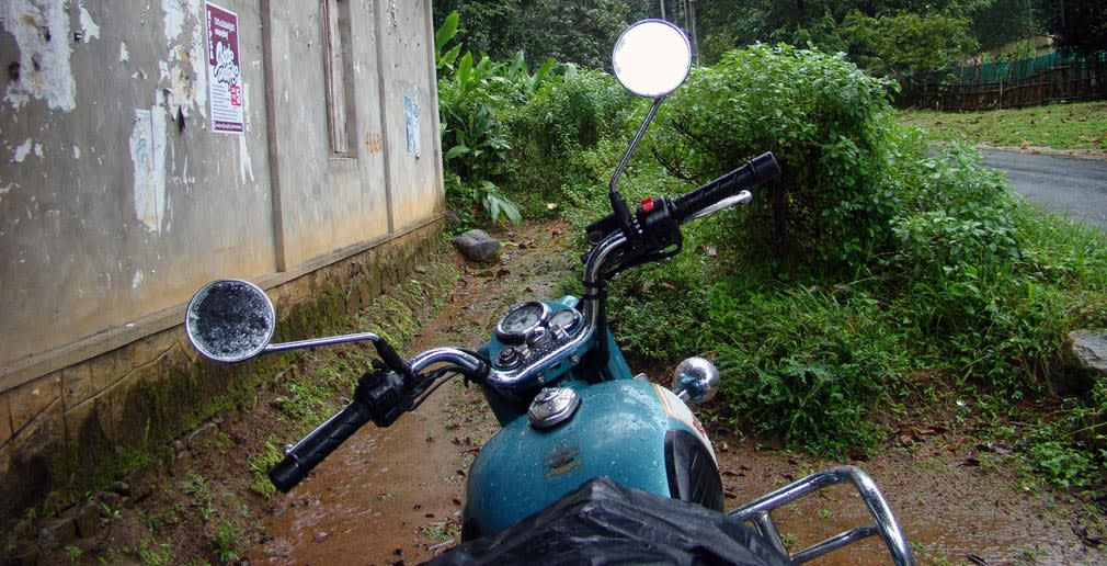 Classic_in_Athirappilly_Forest