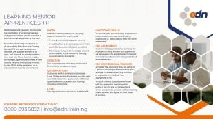 Learning Mentor Apprenticeship fact sheet