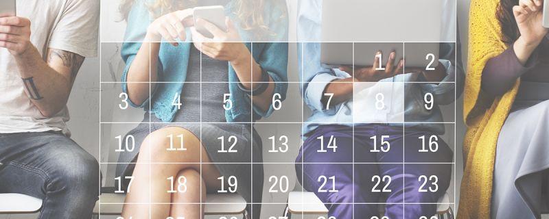 Online scheduling software salonized
