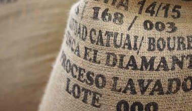 Coffee-el-diamante-2014-harvest