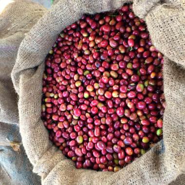 Ethiopia-generic