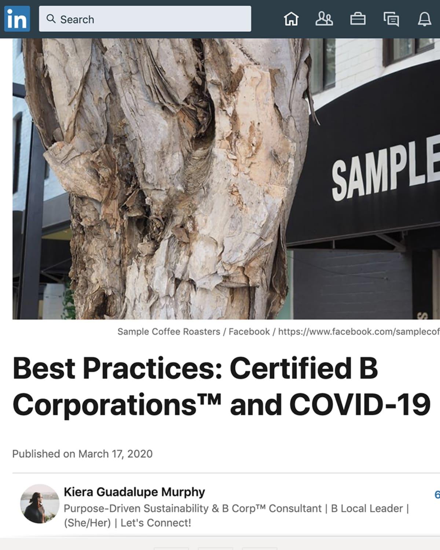 Coronavirus B Corporation Article Cover
