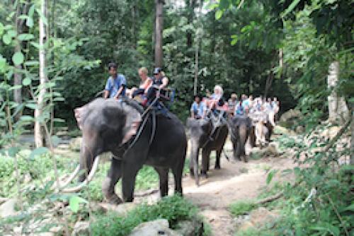 Namuang Jungle Trip