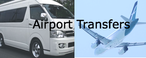 Airport Transfers Shopping Category Image