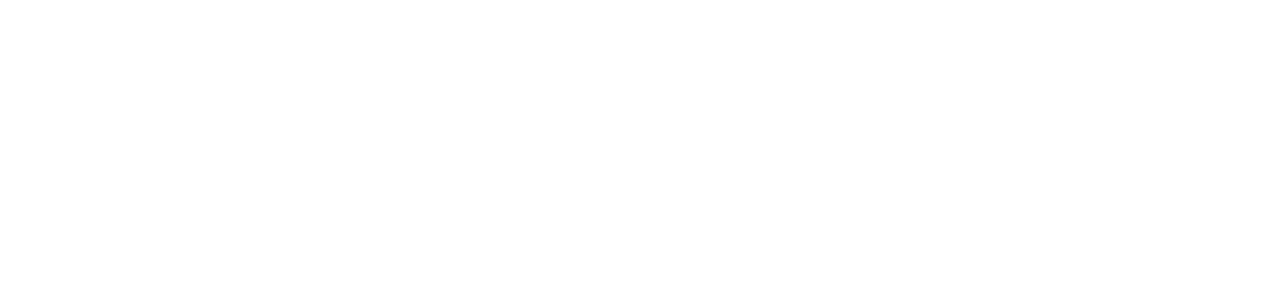 flash care logo