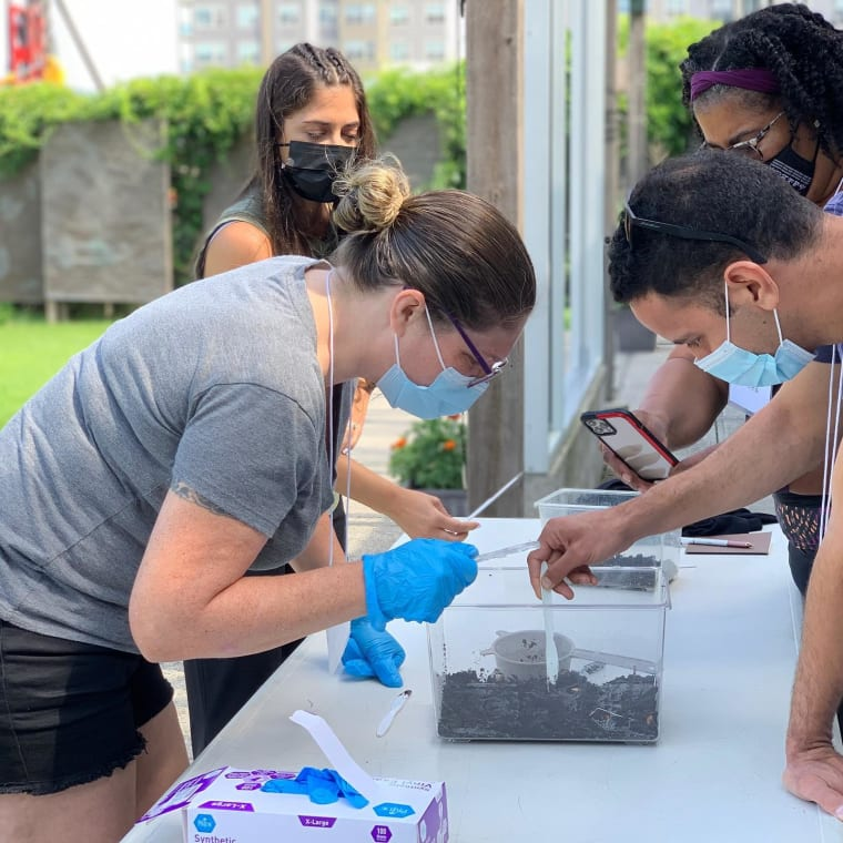 What a beautiful day to be @slccurb for Biodiversity in the Natural World! We explored compost, made Compost in a Bottle, visited the @groundwork_hv Science Barge (Thanks Jason!), harvested vegetables, and did a little weeding in the CURB community garden. Thank you to all the teachers, many from @mercy_stem, who participated! #environmentaleducation #science #slccurb #urbanenvironmentaleducation #sciencebarge #stemeducation #communitygarden