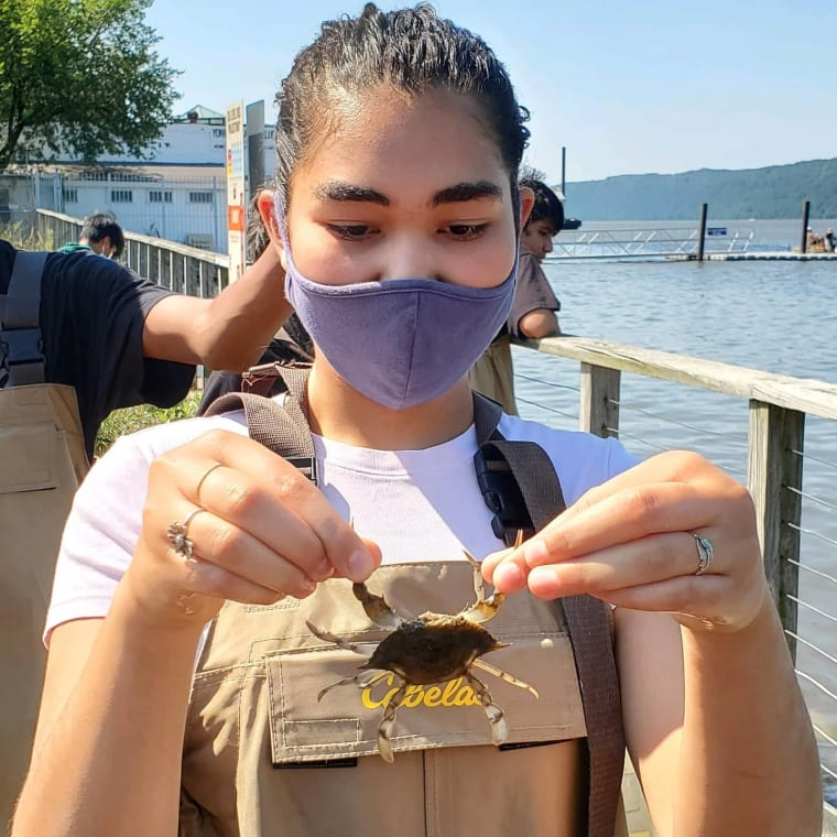 This week CURB hosted the Riverside High School Summer Enrichment Program. 14 students participated in various river-based education and research activities including seining, oyster measuring, water quality, and more. @yonkerspublicschools #yonkers #environmentaleducation #science #waterquality #oysters #fish #hudsonriver