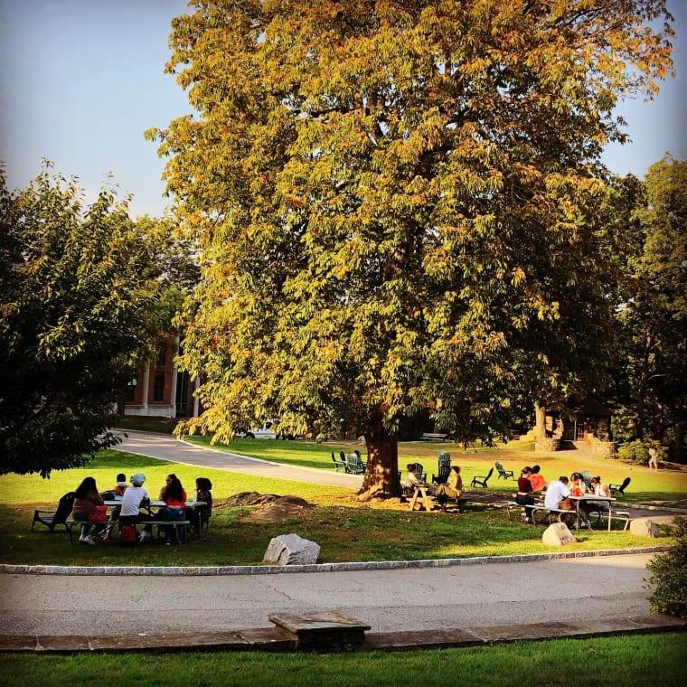 Looks like fall 🍁 Feels like summer ☀️ • • • #sarahlawrencecollege #sarahlawrence #fall #summer #campus