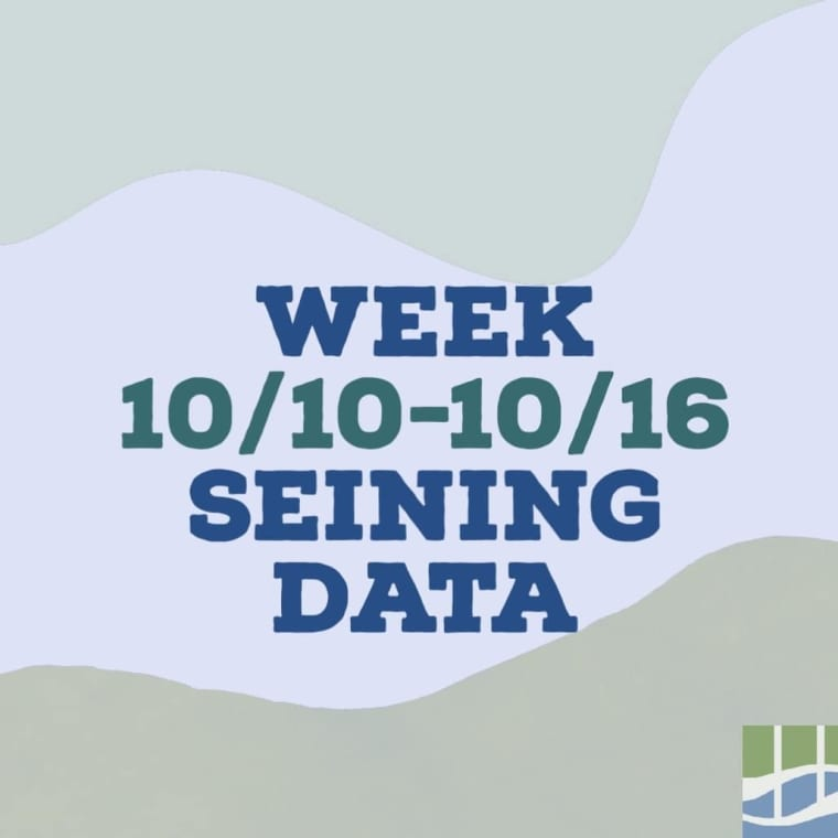 Check out last week's seining data at CURB! Results include our volunteer seining research, CURB's After School Program, and Day in the Life of the Hudson River. #hudsonriver #yonkers #seining #research #fish #crabs