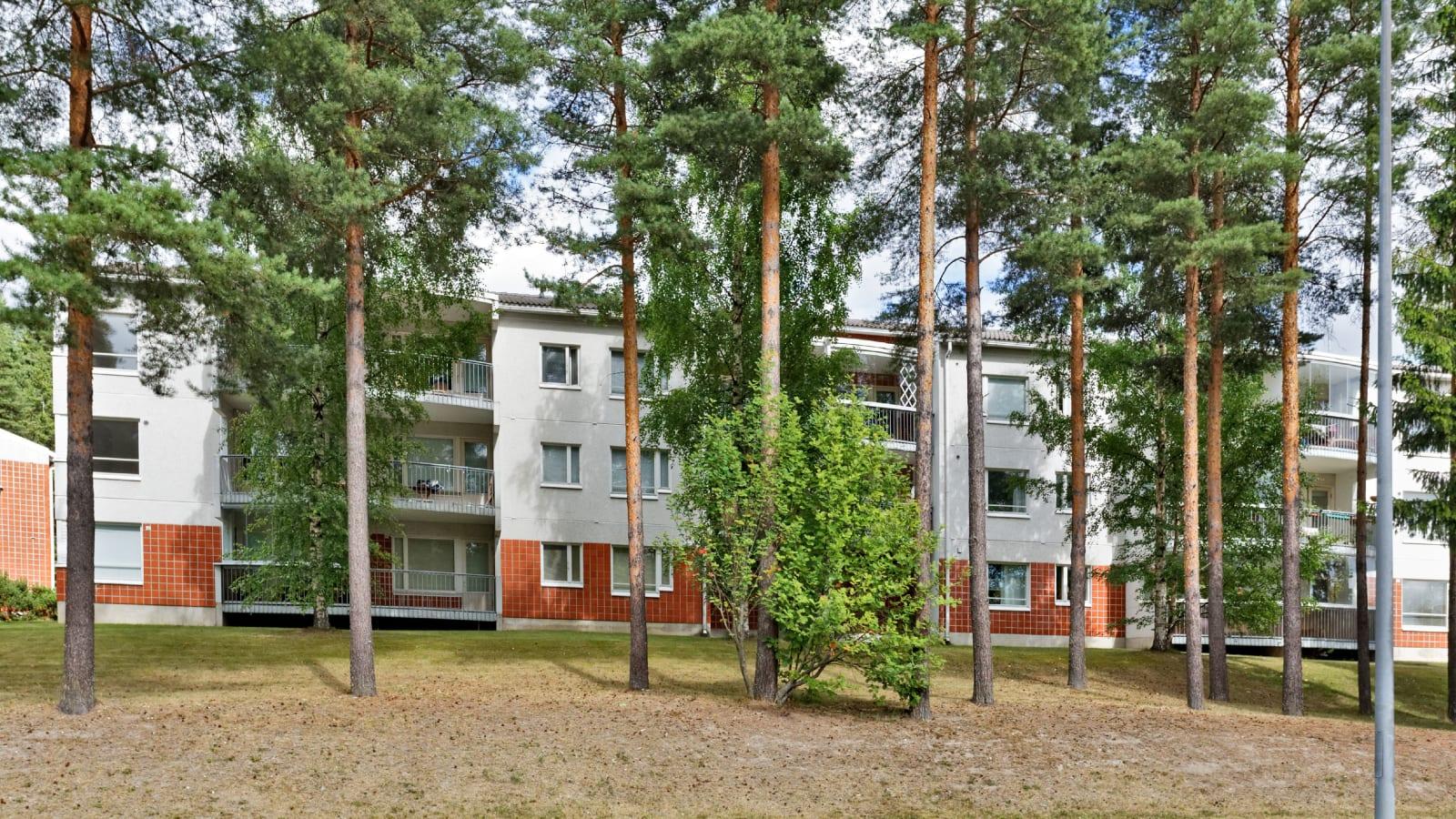 Turku, Halinen, Paavinkatu 24