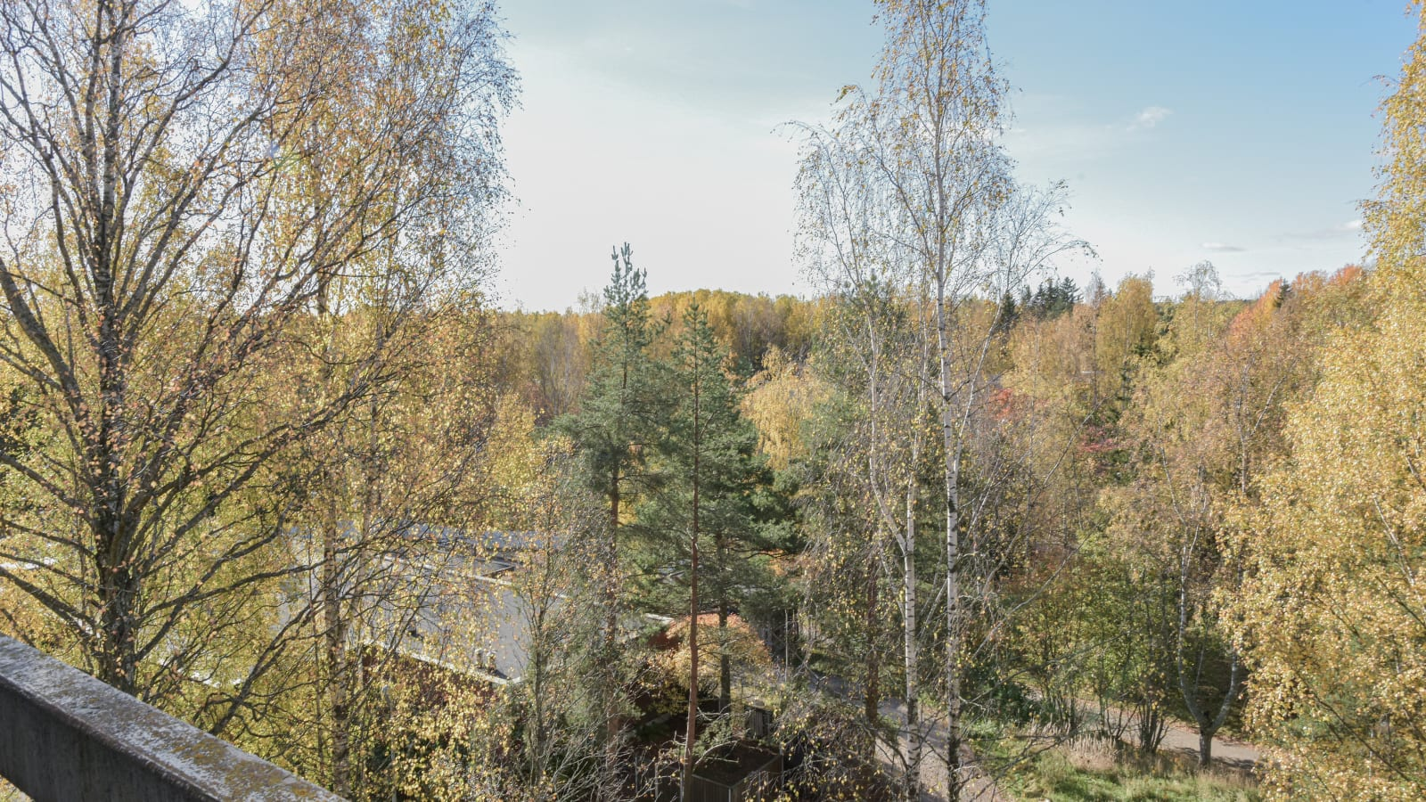 Helsinki, Kannelmäki, Vetelintie 5