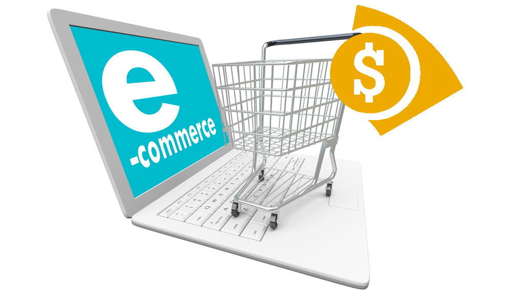 How Much Does It Cost to Build an eCommerce Website in ASP