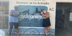 Sayulita Life's $5,000 August Donation Recipient*: SayulitAnimals--