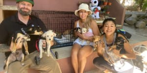 February's Recipient of Sayulita Life's $5,000 Donation*: Wet Noses Animal Rescue in Sayulita