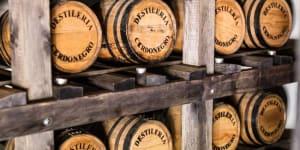Sayulita's One & Only Distillery, Cerdo Negro