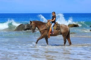 Horseback Riding (Lessons)
