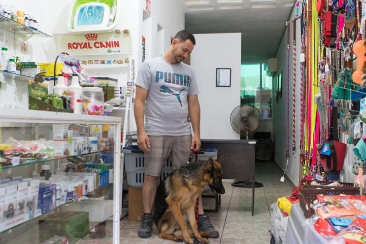 Veterinarian Of Sayulita in Sayulita Mexico