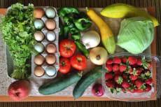 Organic Select in Sayulita Mexico
