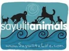 Sayulitanimals in Sayulita Mexico