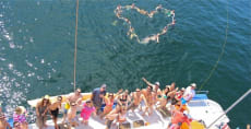 Ally Cat Sailing Adventures (Weddings) in Sayulita Mexico