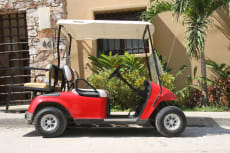 Roy's Golf Carts in Sayulita Mexico