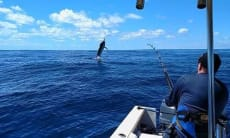 Y-Knot Fishing & Tours in Sayulita Mexico