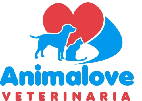 Animalove Veterinary Clinic in Sayulita Mexico