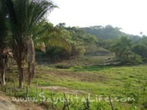 Land In Eco-Community: Www.tierraluz.org for sale in Sayulia Mexico
