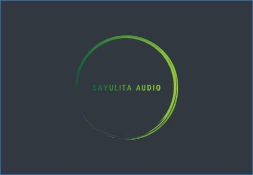 Sayulita Audio in Sayulita Mexico
