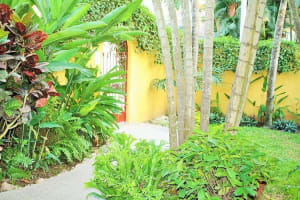 La Villa Buena Vida Vacation Rental in Sayulita Mexico