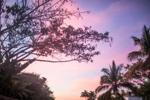 Casa Mariposa Vacation Rental in Sayulita Mexico