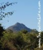 Wealika Property for sale in Sayulia Mexico