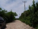 Lots And Land SIR253 for sale in Sayulia Mexico