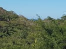 Ocean View Lot SIR718 for sale in Sayulia Mexico