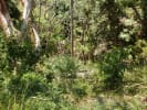 Titled Land With Amazing Ocean Views for sale in Sayulia Mexico