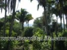 Lots In San Pancho for sale in Sayulia Mexico