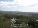 Nanzal Property for sale in Sayulia Mexico