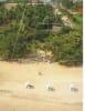 Private Beachfront Property for sale in Sayulia Mexico